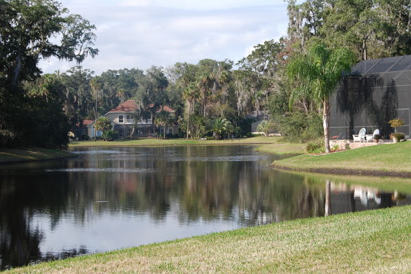 Plantation Oaks lake view